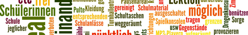 Bildbanner Schulordnung OSZT, Quelle: www.wordle.net